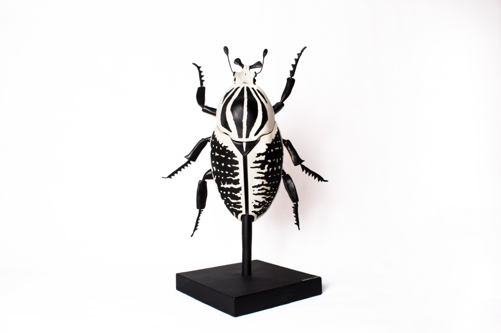 Goliath beetle (2015).