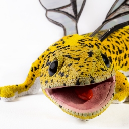Leopoldo, the hybrid gecko