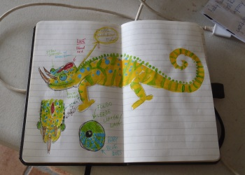 Sketch of the Jackson chameleon