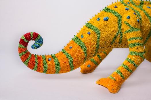 Detail. Jackson's tail.