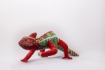 The Panther chameleon.
