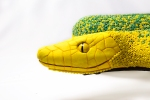 Lola, hybrid python inspired by two species; Morelia viridis y Dendroaspis angusticeps. Post-use material, air hardening clay and glass beads.