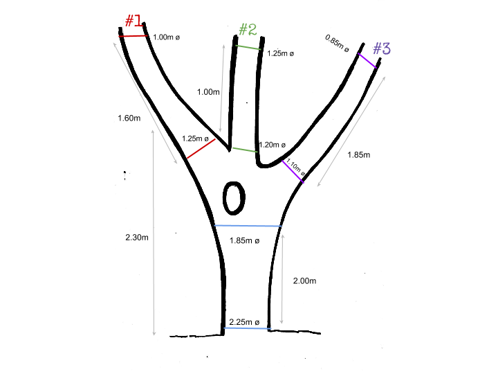Measurements of three number 1.