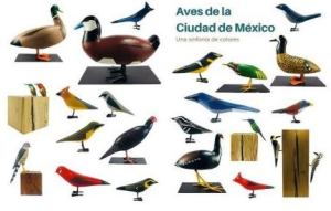 Aves de la Ciudad de México, una sinfonía de colores. 19 October to 19 November in subway station Metro Zócalo, Mexico City.