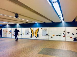Butterflies of Mexico City in the Coyoacán metro station, CDMX.