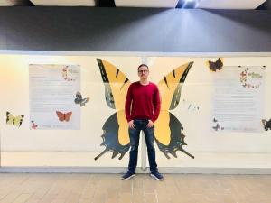 Butterflies of Mexico City by Davit Nava, in the Coyoacán metro station, CDMX.