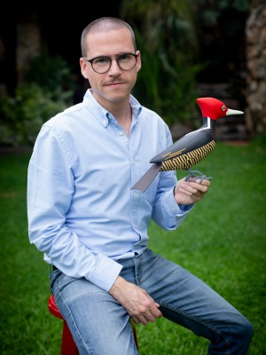 Davit Nava, sustainable art, woodpecker