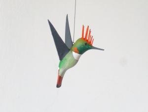 Colibrí Coqueta de Atoyac, Lophornis brachylophus.