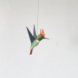 Mundo colibrí – Un regalo de las Américas